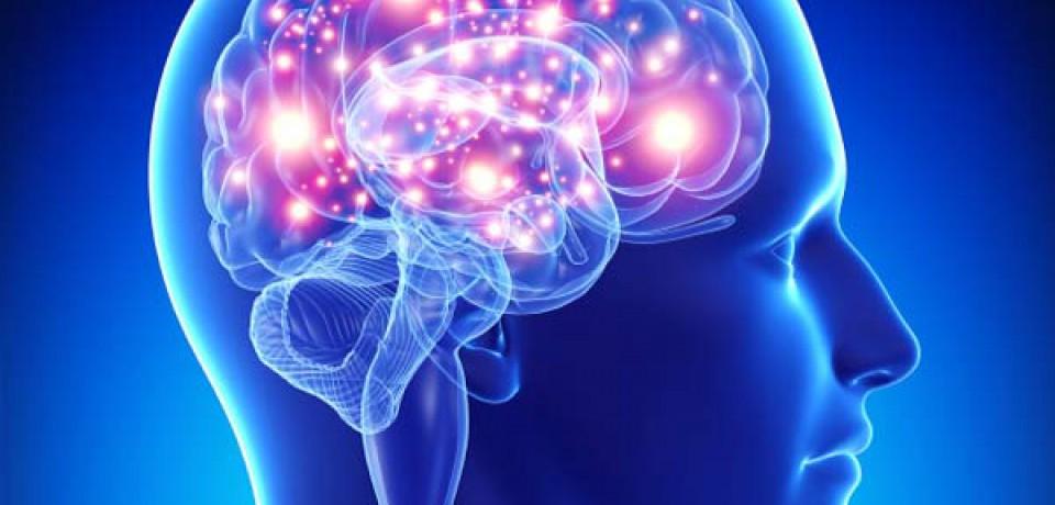 آغاز هفته آگاهی از مغز