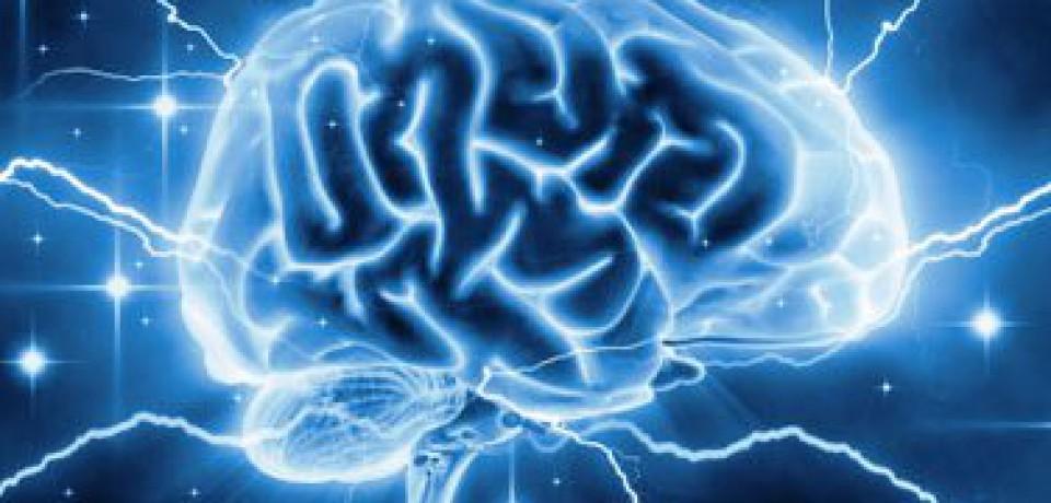 نامگذاری هفته دوم اسفند به نام هفته «آگاهی از مغز»