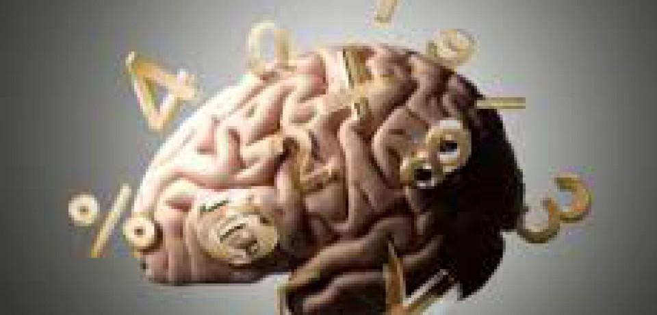 رمز و راز چگونگی رسیدگی مغز به اعداد