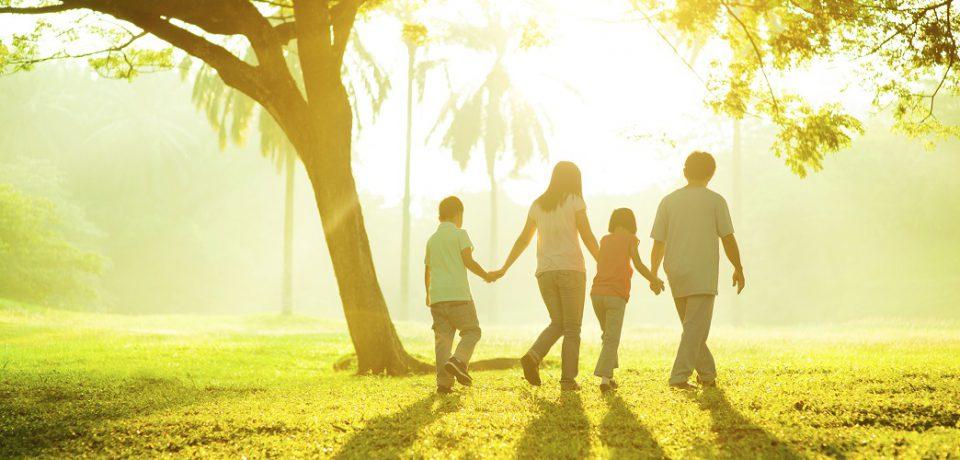 راه اندازی رشته «خانواده و سلامت جنسی» در مقطع دکتری