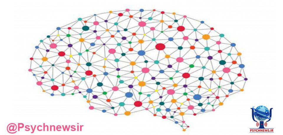 ۶ رشته پیرامون علوم و فناوری های شناختی راه اندازی می شود