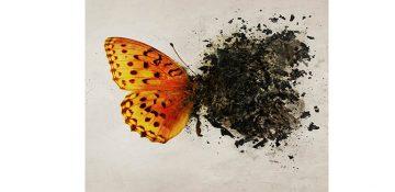 ۵ اشتباه رایج در مورد اختلال استرس پس از سانحه PTSD