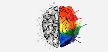 خاطرات چگونه در مغز ثبت می شوند؟