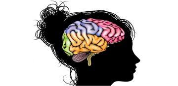 مرمت مغز با سلول های بنیادین ممکن خواهد شد؟