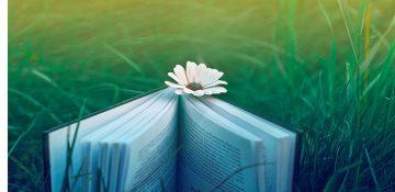 جای خالی کتاب در تقویت پژوهشگر