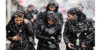 مولاوردی از وضعیت شغلی و تحصیلی دختران ایرانی می گوید