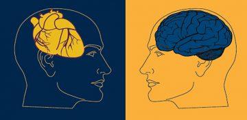 پژوهش های جدید: قلب مانند مغز در روند هوشیاری نقش دارد