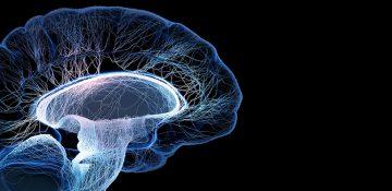 دسترسی پژوهشگران به اولین دستگاه مغزنگاری در کشور