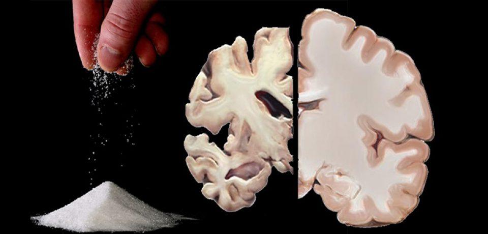 مغز قند مورد نیاز خود را تولید می کند