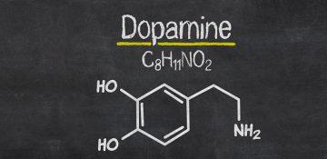 پژوهشگران روش جدیدی برای اندازه گیری دوپامین مغز یافتند