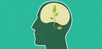 حفظ محیط زیست از منظری روانشناسانه