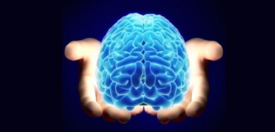 ثبت نام شرکت در همایش بینالمللی علوم شناختی آغاز شد