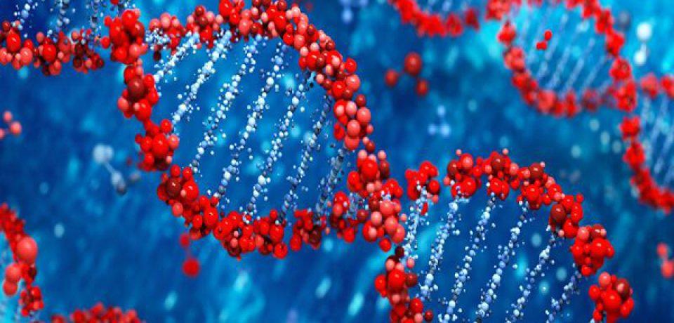 شناسایی ژنهای مرتبط با اختلال وسواس فکری عملی