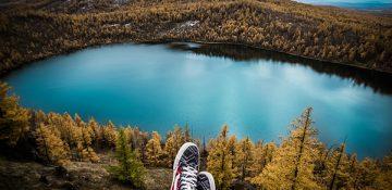 زندگی نزدیک درختان به سلامت مغز و کاهش استرس کمک می کند