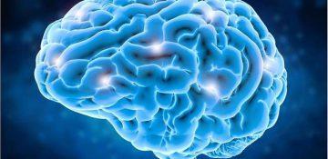 شناسایی سلولهای اضطراب در مغز انسان