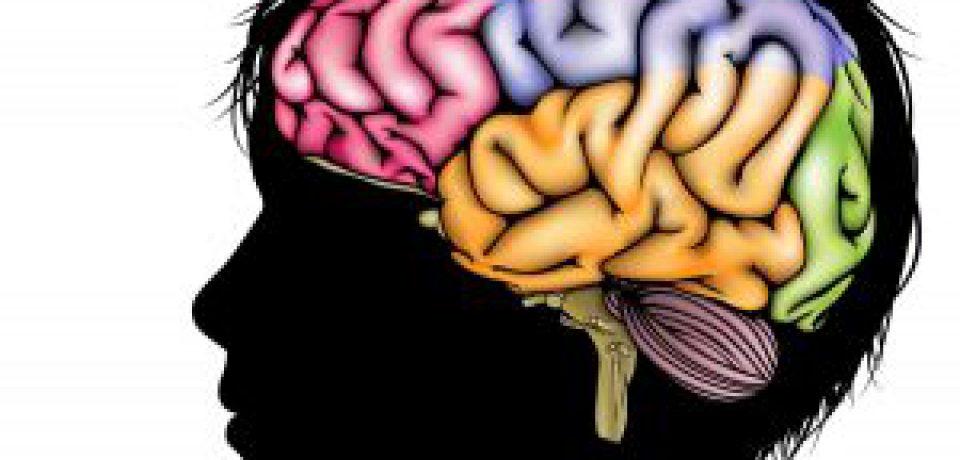 اوتیسم، شیزوفرنی و اختلال دو قطبی ویژگیهای مولکولی مشترکی دارند