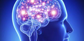 سیگنال عصبی که نقش مهمی در درک شنیده ها دارد