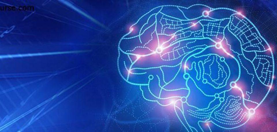 توانایی عجیب مغز در انتقال عملکردها به نواحی مختلف خود