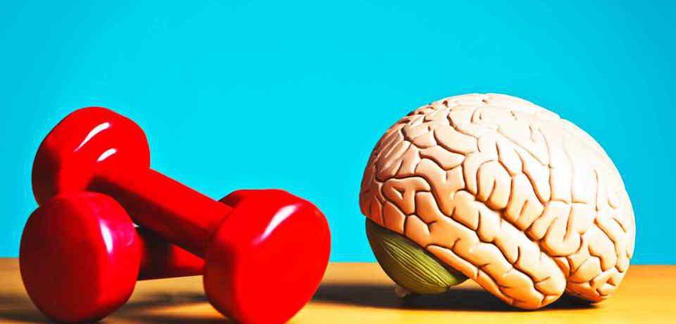روش مناسب برای پیشگیری از تحلیل بافت مغز