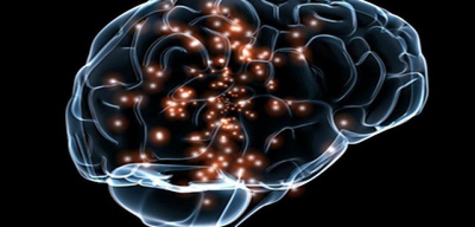 انعطافپذیری مغز حین یادگیری کمتر از تصورات قبلی است