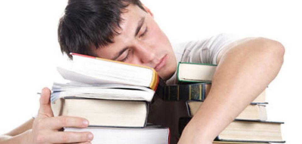 """""""خوابیدن""""؛ کلید یادگیری جدید"""