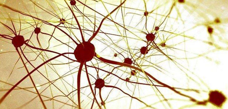 کشف علت تشنج در کودکان اوتیسمی