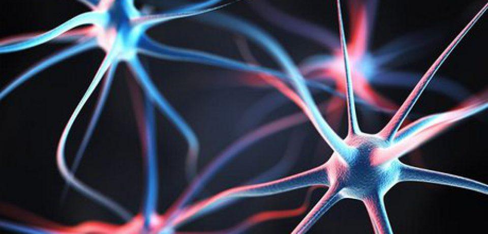 افراد خلاق ۹۰ درصد بیشتر احتمال ابتلا به اسکیزوفرنی را دارند