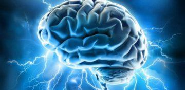 مغز انسان چگونه ۶ برابر بزرگتر از حد انتظار رشد کرد؟