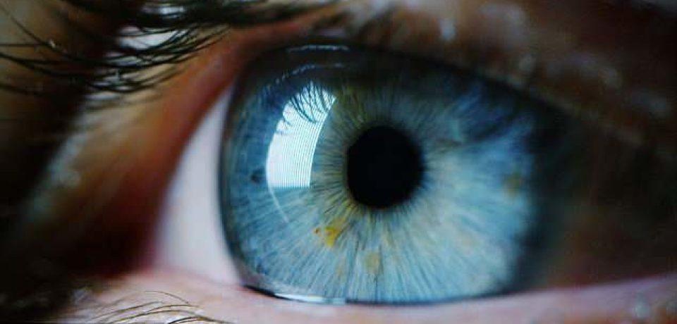 بررسی رابطه میان حرکات چشم و شخصیت با استفاده از هوش مصنوعی