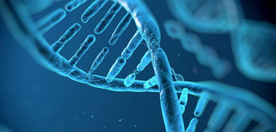 ژنهایی که باعث احساس تنهایی میشوند