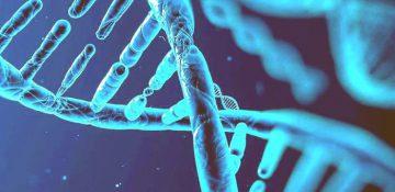 کشف ژنهای سندروم داون