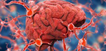 چرا اغلب درمانهای آلزایمر با شکست مواجه میشوند؟