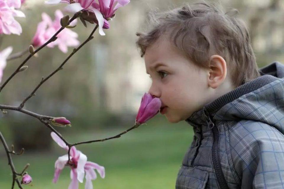 افرادی که بویایی قویتری دارند در مسیریابی بهتر هستند