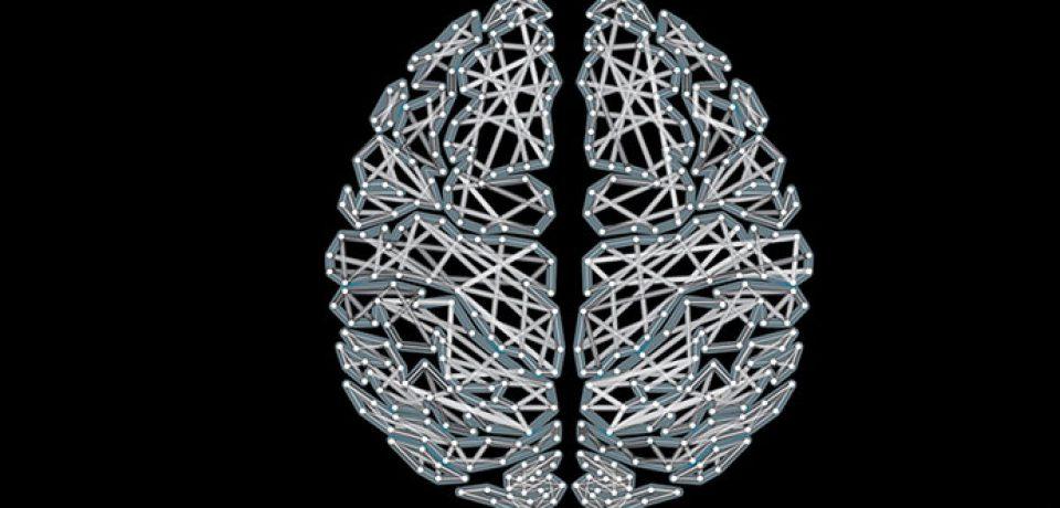 با ساعتهای مغزتان آشنا شوید.