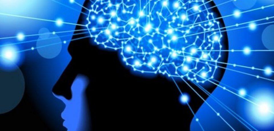تصور اشتباه دربارهی طرف چپ و راست مغز انسان