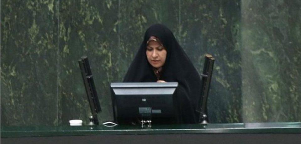 ذوالقدر،عضو کمیسیون فرهنگی مجلس:آموزش زوجین قبل از ازدواج اجباری میشود