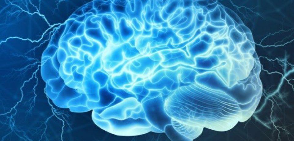 ورود اسیدهای چرب به مغز منجر به افسردگی میشود
