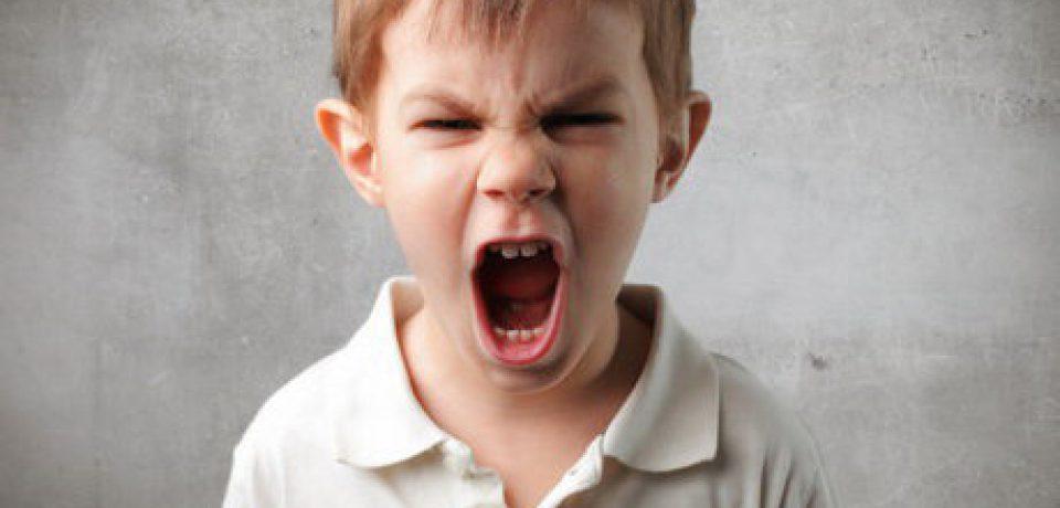 والدین پرخاشگر کودکان منفعتطلبِ عصبی تربیت میکنند