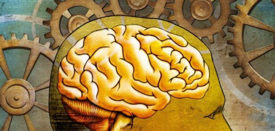 مغز افراد فراموشکار بیشتر کار میکند!