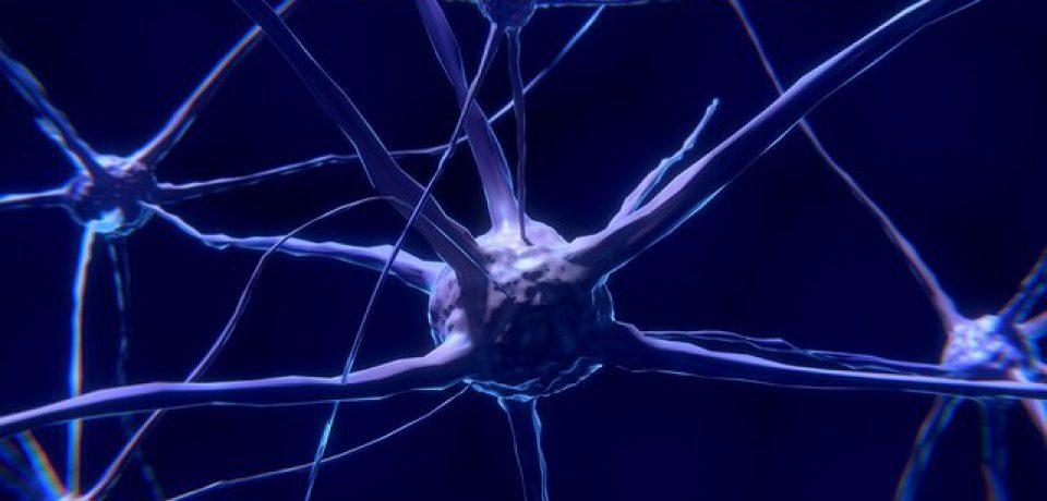امید به کشف داروی آلزایمر شدت گرفت