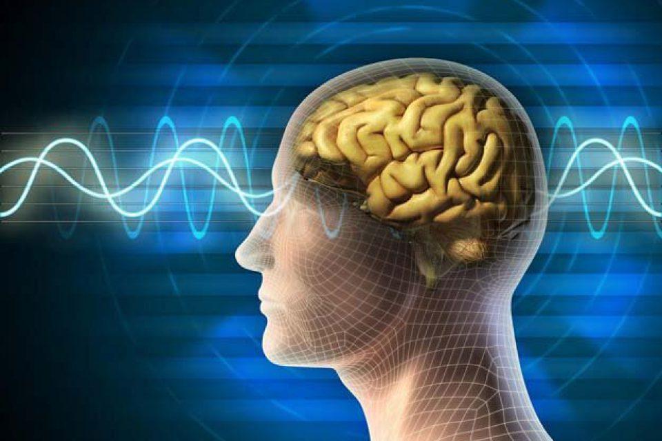 کاری که مغز افراد سالخورده را 30 سال جوانتر میکند