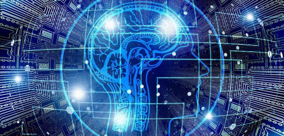 تغییر در شبکههای مغزی عامل کاهش قدرت شناخت در سنین بالا است