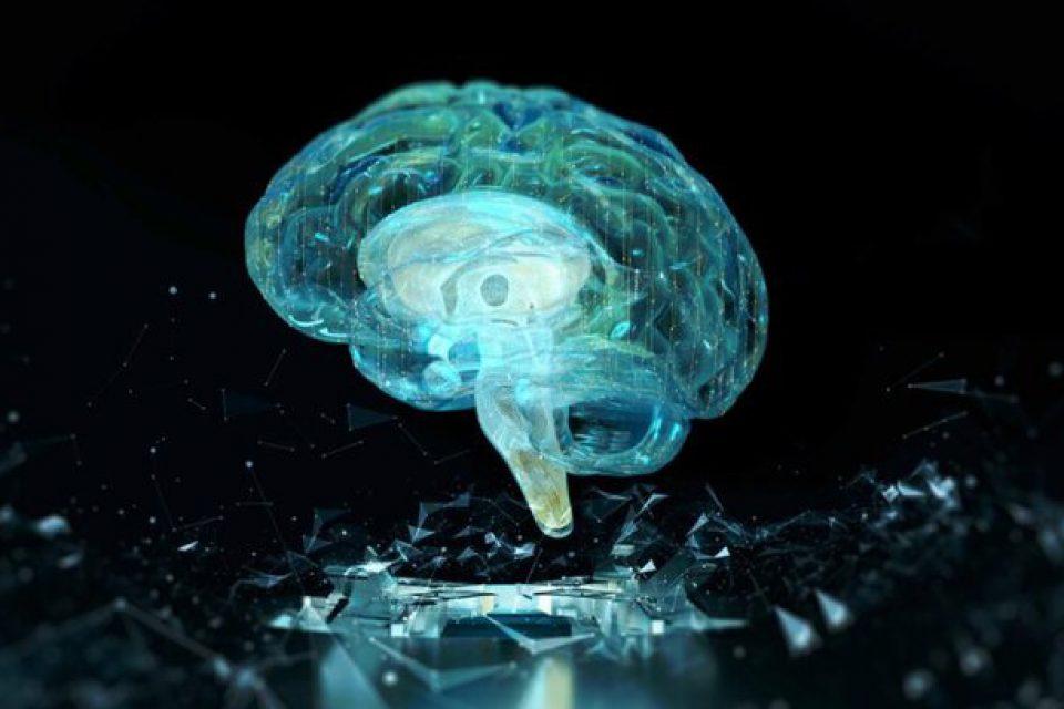 پیشگیری از آلزایمر با کمک یک مسیر سلولی جدید