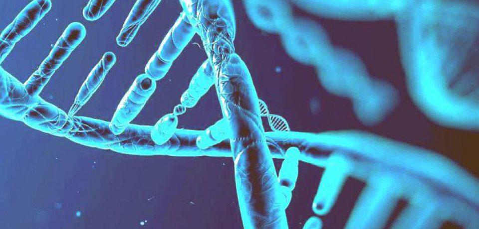 اختلالات اضطرابی ریشه ژنتیکی دارند