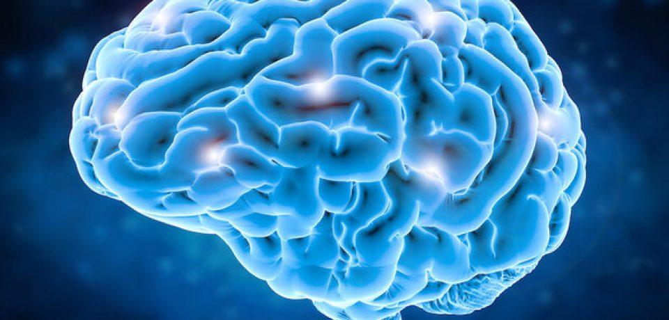 عضلات با مغز حرف میزنند!