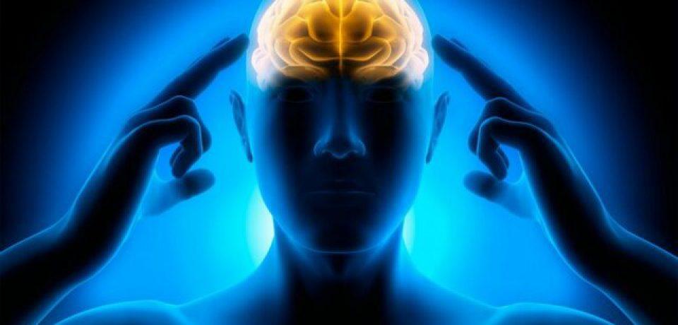 افکار شما مغزتان را تغییر فیزیکی می دهد!