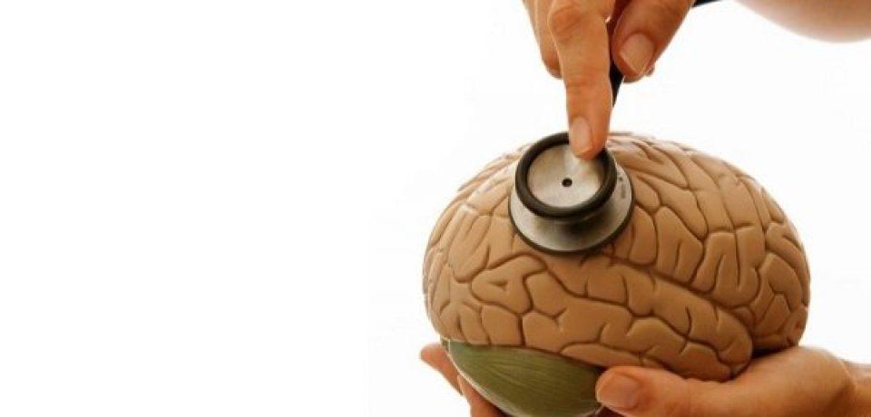 رژیم غذایی مناسب عملکرد ذهن و مغز