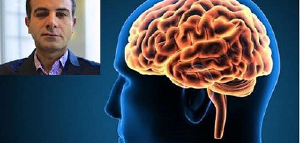 مغز چگونه صداها را از یکدیگر تفکیک میکند؟