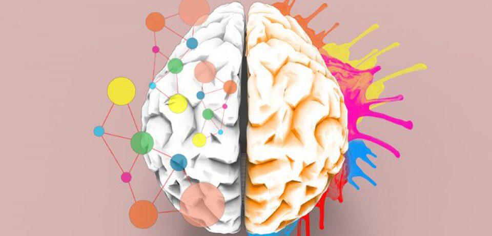 مغز ما چگونه زیبایی را درک میکند؟