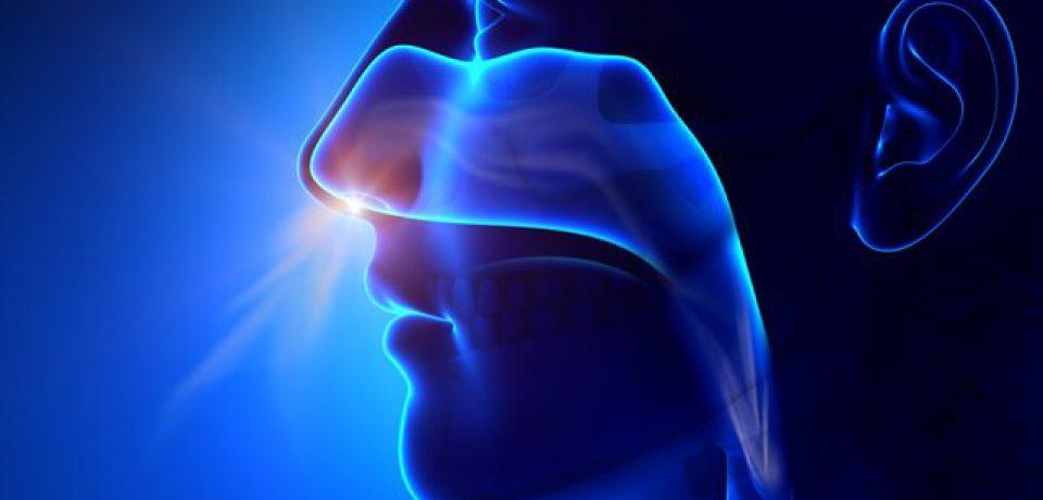 کمک به درمان آسیب مغزی با آزمایش بویایی!